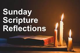Dr. Scott Hahn - Gospel Reflections 25-10-2020